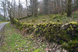 Moss-covered stone walls