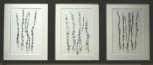 Silver Birch Triptych