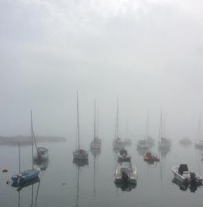 Misty morning in New Quay