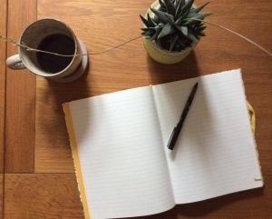 Blank journal...